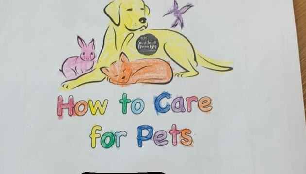 How to take care of the different pet animals?
