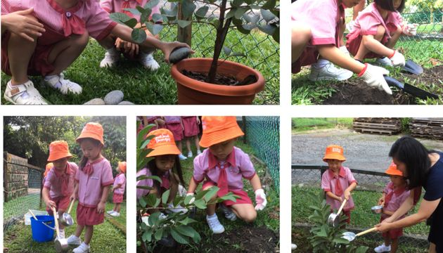 SSDB 2018Launch Party:TreePlanting