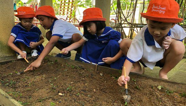 City in a Garden by Little Footprints Preschool (Y388)
