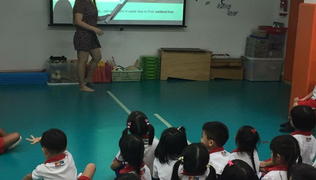 1st Story: PCF Sparkletots@Braddell Heights 417- All About Cassowaries: Learning About Birds