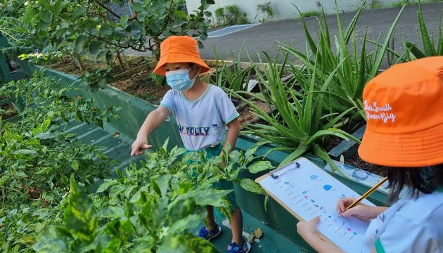 My Jolly Educare: organic foods that can be used in ZERO waste intiatives
